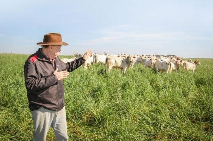 Agropecuária é o motos da nossa economia!