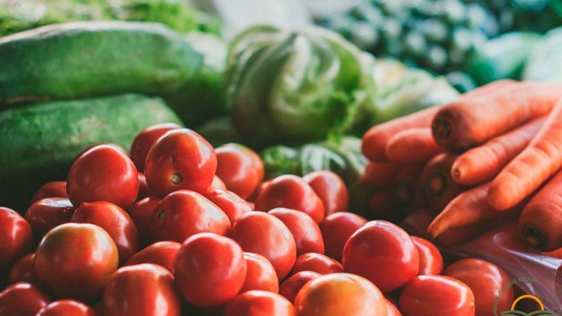 Aprovado Projeto de Lei que amplia incentivos à Agricultura Orgânica