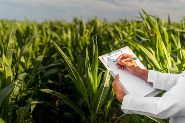 Coordenadas geográficas são obrigatórias em receitas agronômicas